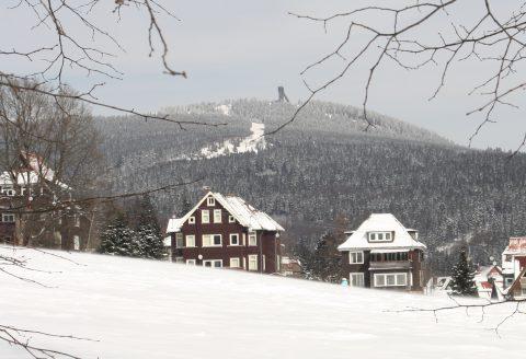 Rathauswiese-min